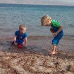 חברי הקיבוץ נופשים בים באילת