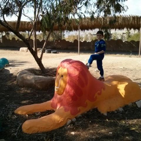 גן משחקים אקו כייף