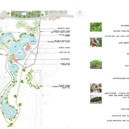 מצגת תכנון פארק הצפרות בלוטן