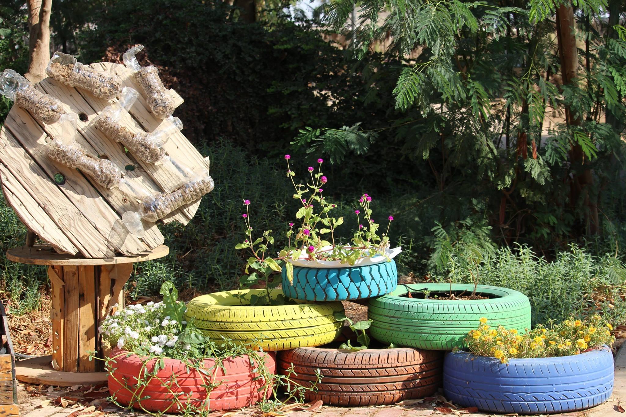 תמונה מהגינה האורגנית בלוטן