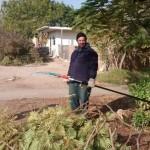 בונים את הבית החדש בקיבוץ לוטן  - דניאל מכין את המעבר למשאית