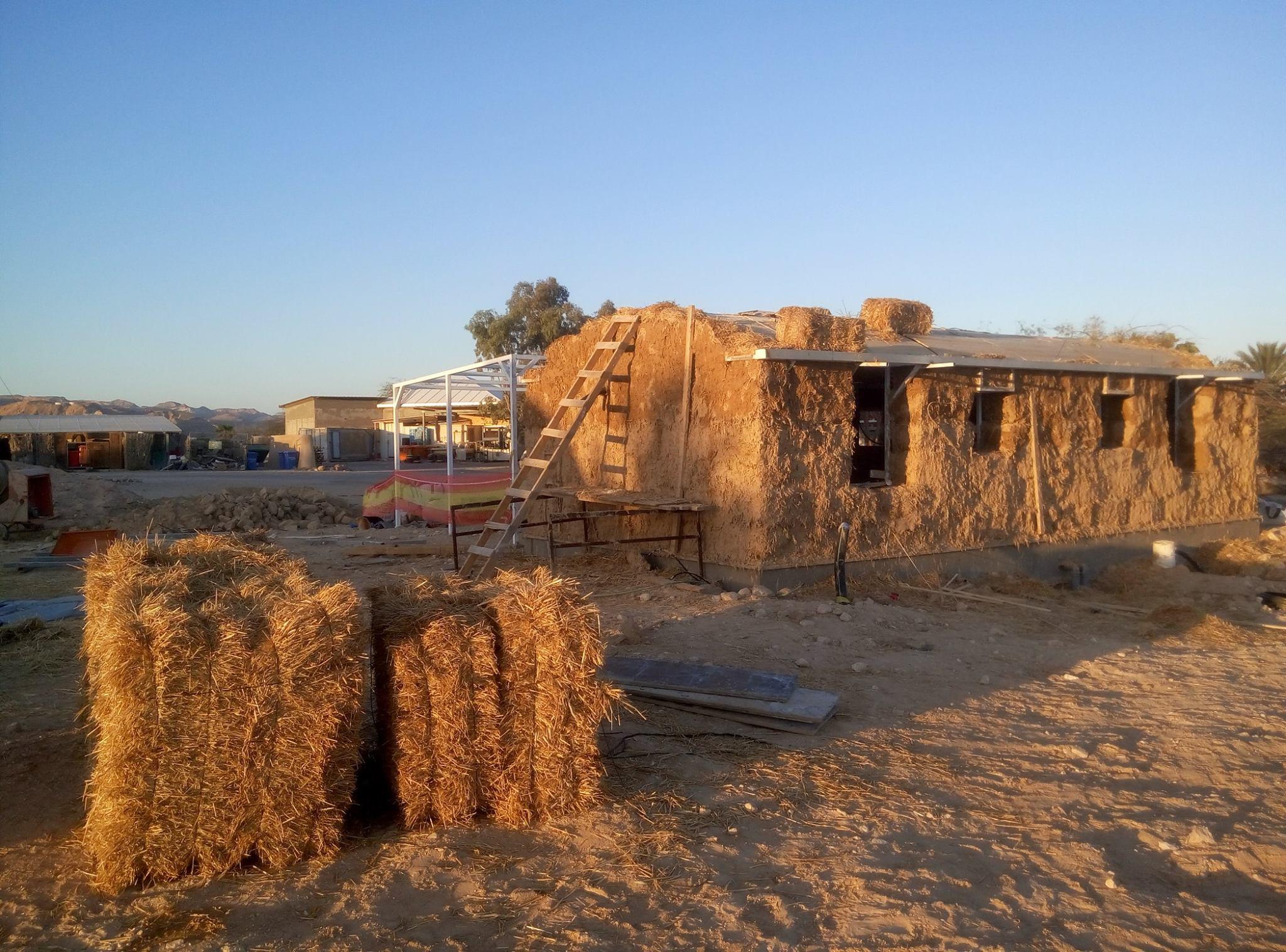 בניית קמפוס