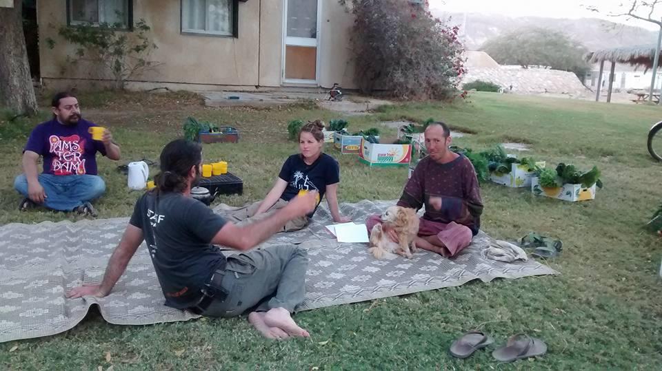 אנשים יושבים בדשא