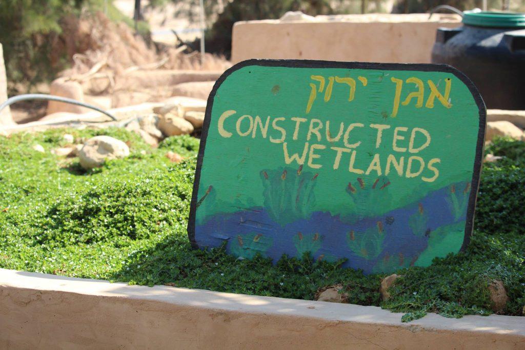 kibbutz lotan constructed wetlands
